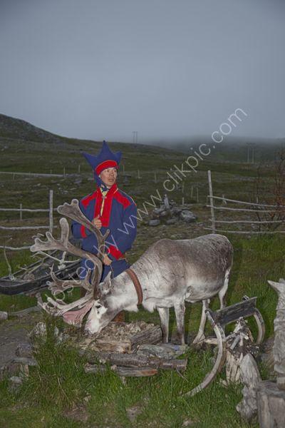 Sami male with Reindeer in Nord Kapp, Norway