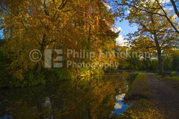 Basingstoke Canal in Autumn ,Hampshire,England.