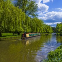 The River Wey.Guildford ,Surrey,England.