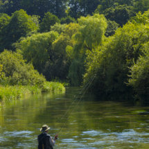 Fly Fishing ,River Itchen,Hampshire ,England