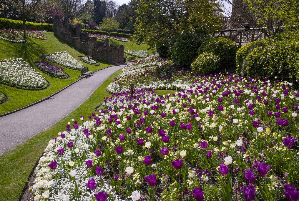 Guildford Castle Grounds ,Surrey England