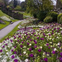 Guildford Castle Grounds ,Surrey England
