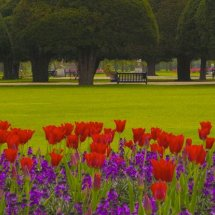 The Great Fountain Garden,Hampton Court Palace ,Surrey,England