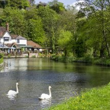 The River Wey,Guildford, Surrey,England