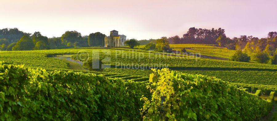 Landscape ,Poitou-Charentes, France