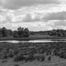 Wetlands Centre at The Vyne NT Hampshire ,England