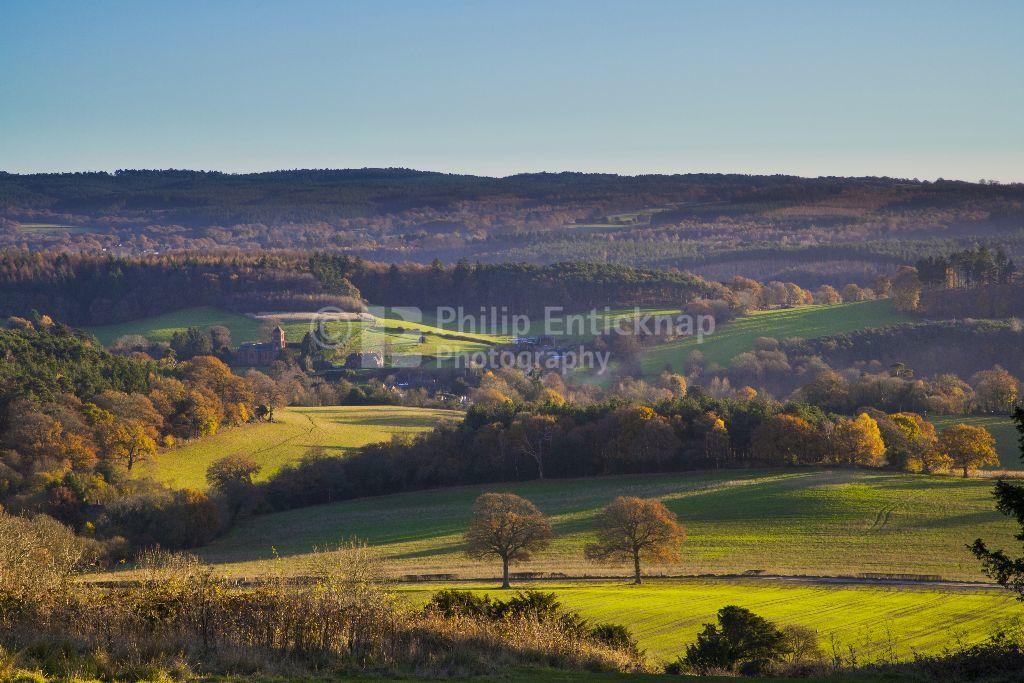 Autumn Landscape Newlands Corner, Surrey, England