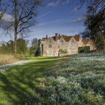 Snowdrops at Chawton House ,Hampshire