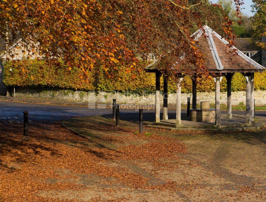 Market stand in Autumn