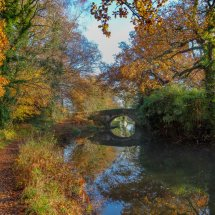 Basingstoke Canal Autumn