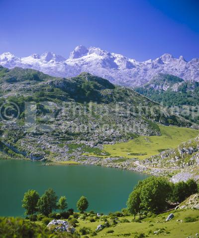 Picos de Europa, Asturias, Spain.