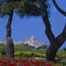 View to Mdina