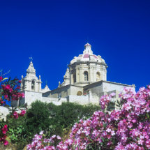 Cathedral of St Paul, Mdina.
