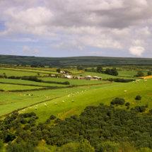 Farmland ,Somerset England .