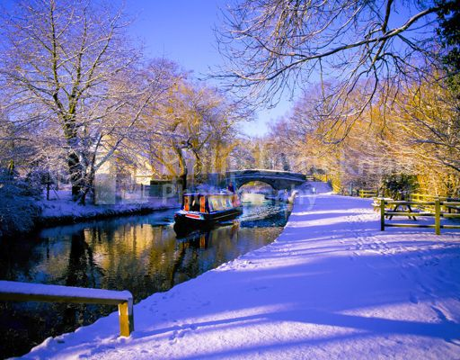 Winter, Basingstoke Canal,Hampshire,England.