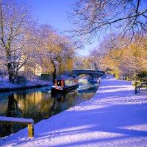 Winter, Basingstoke Canal,Hampshire,England.