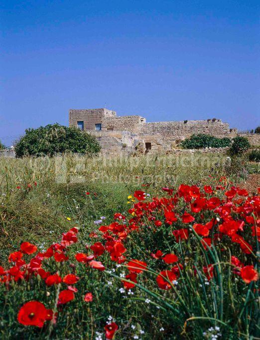 Farmhouse Malta