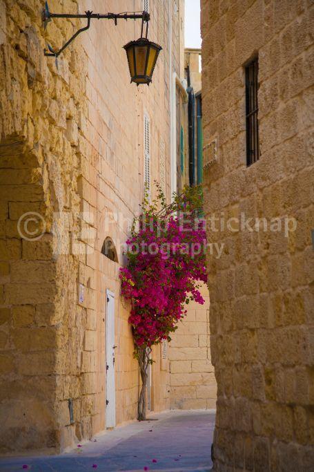 Street scene Mdina,Malta