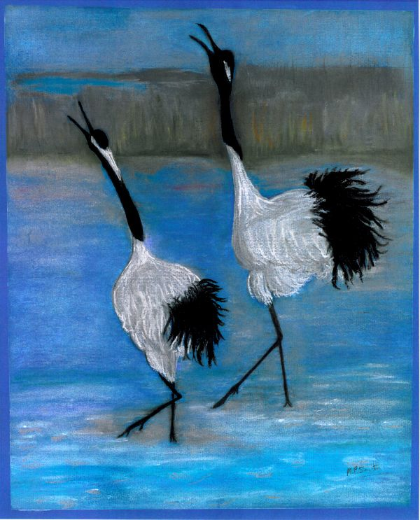 Dancing on ice Japanese Cranes