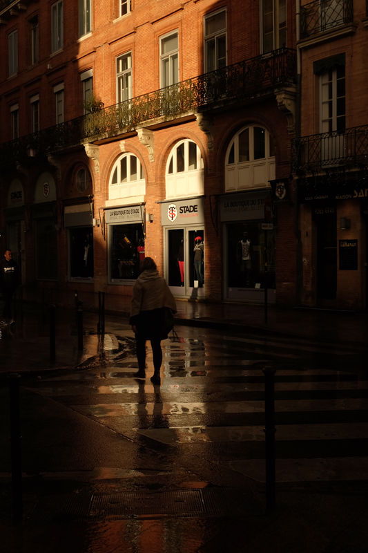 Toulouse in the Rain