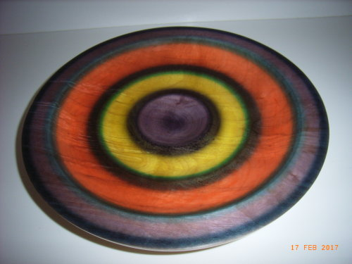 Coloured Platter : Sycamorfe : 12 1/2 inches diameter : Ref 589