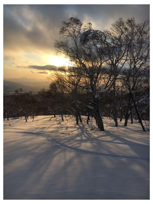 Snowy Dusk