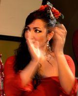 Red Flamenco II
