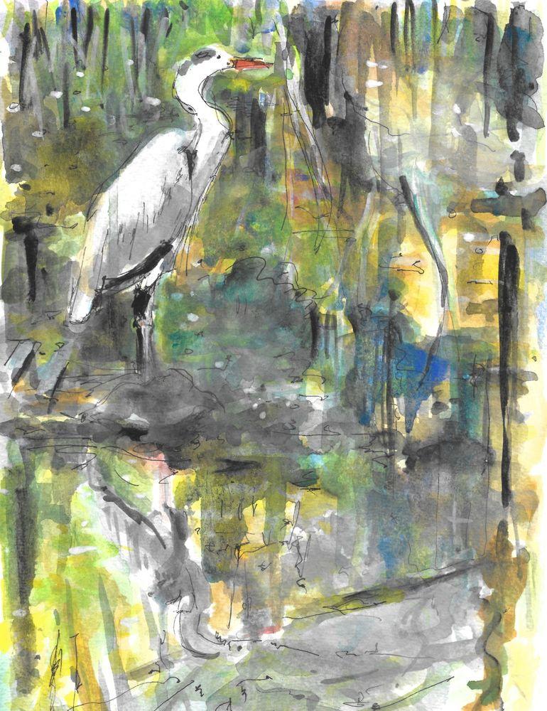Heron*