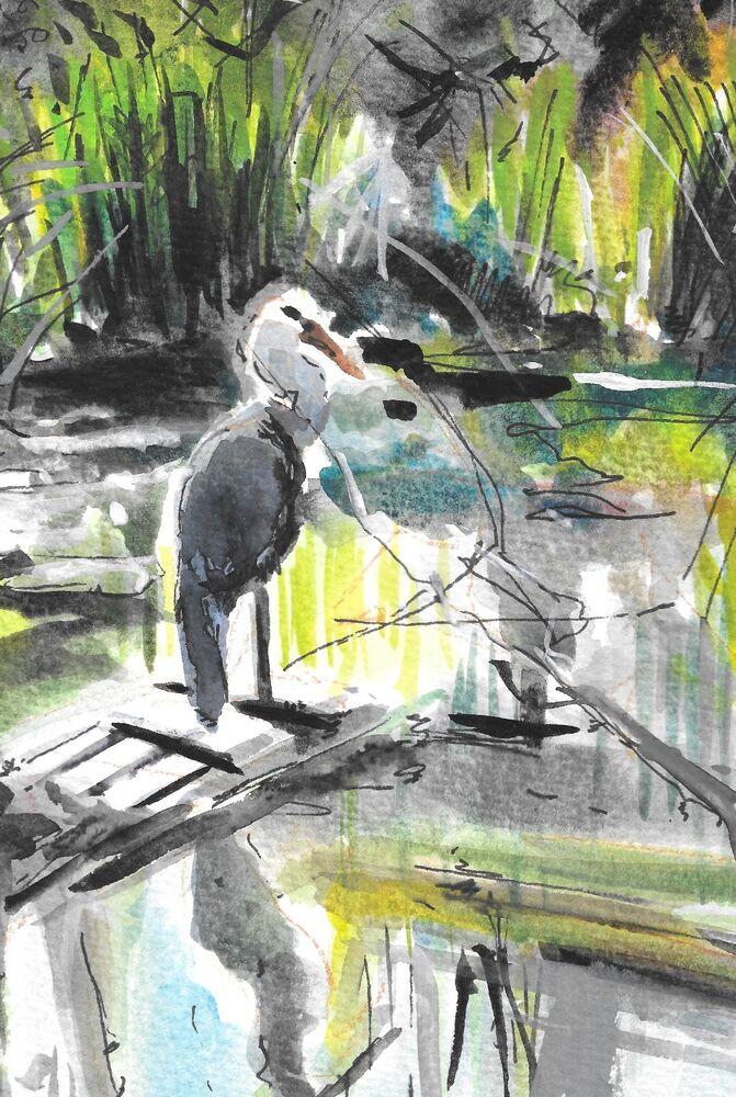 Heron on Friern Barnet Pond