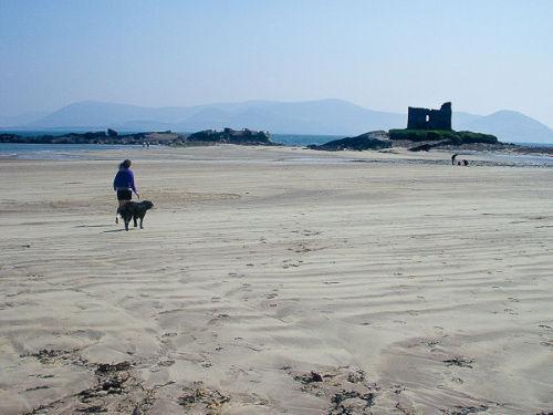 Ballinskelligs Beach, in walking distance