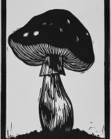 Day 1 - Poisonous, Limited edition of 10 prints, w.6.7 x h.10cm (unmounted)