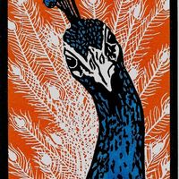 Percy Peacock II, Multi block, edition of 20 prints, hand finished with artists grade ink, w.9.1 x h.12.7cm
