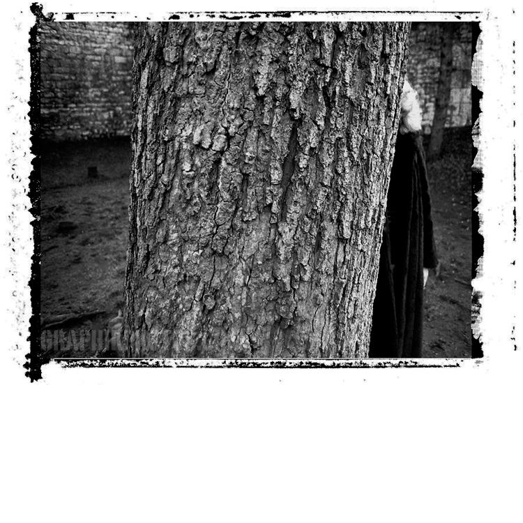 Model behind tree, Lincoln, UK