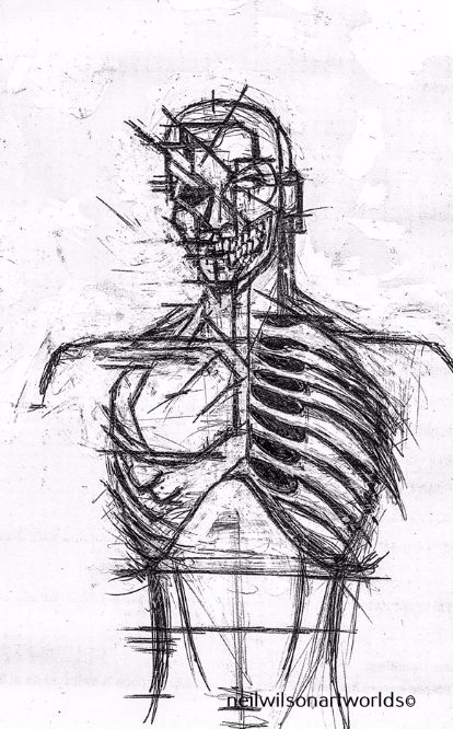 Male Anatomical Study 1, 2013. (Pen and inks).  210mm x 297mm.