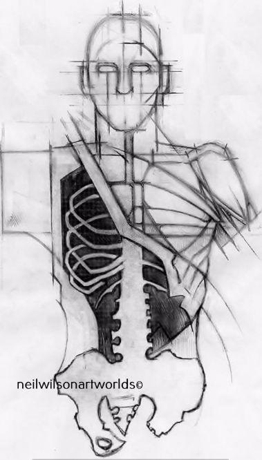 Anatomical Study 10, 2014. (Pencils).  210mm x 297mm.