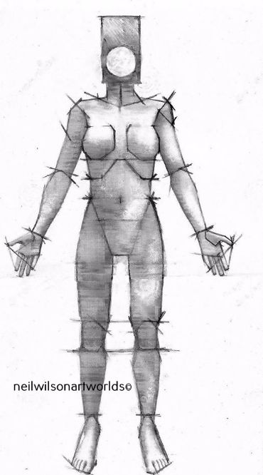 Female Figure 6, 2015.  (Pencils/ inks/ anatomical reference).  210mm x 297mm.