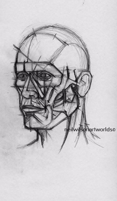 Anatomical Head Study 2,  2014, (Pencils).  148mm x 210mm.