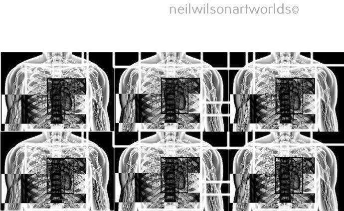 Circuit 15. 2017.  (Manipulated found image).