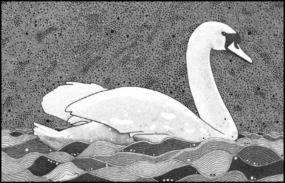 Pen And Ink Swan