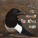 Confessions Of A Magpie 1