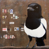 Confessions Of A Magpie 2