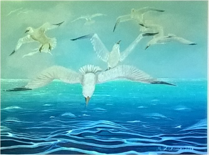 Seagulls over sea. Acrylics on canvas 80x60 cm2
