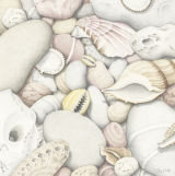 Shells and Pebbles