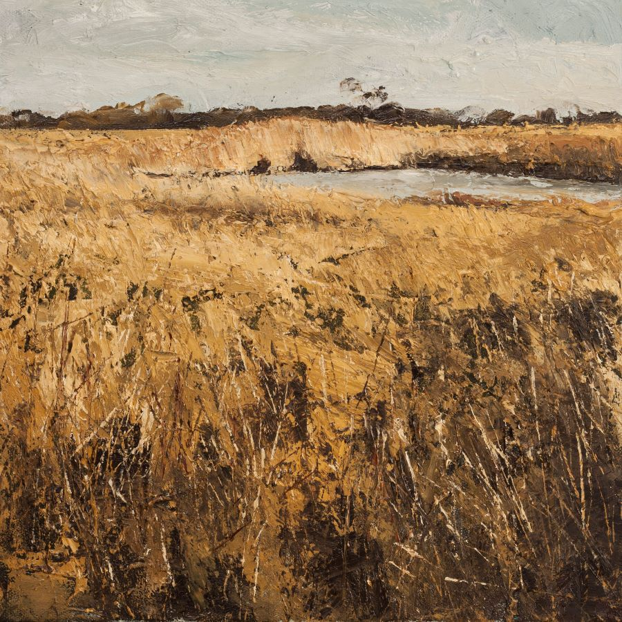Gentle breeze stirs the reeds
