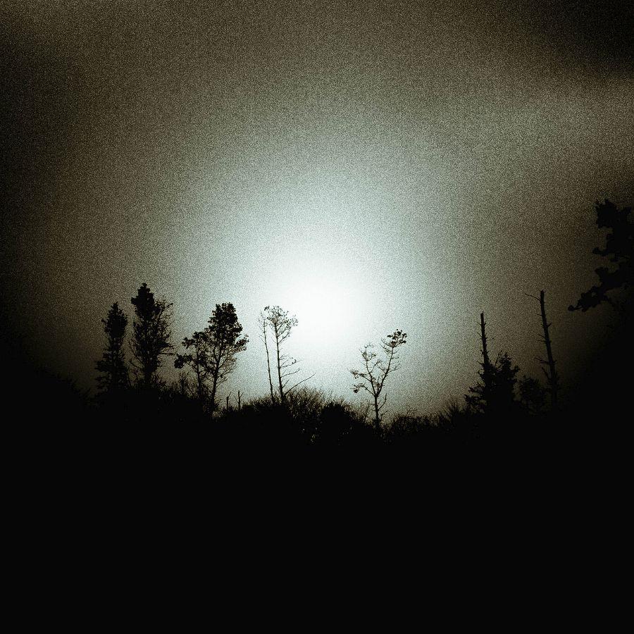 As the sun burns through the mist