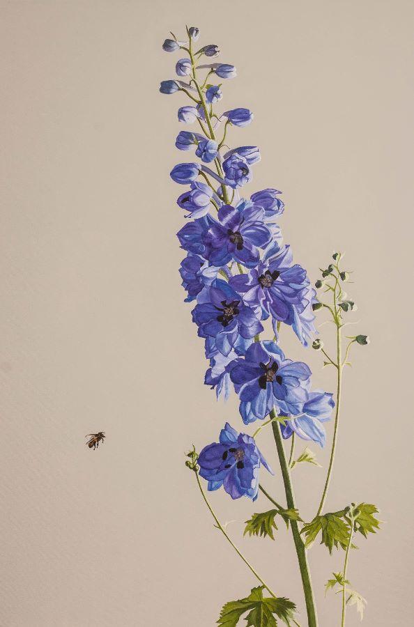Little Black Cornish Bee