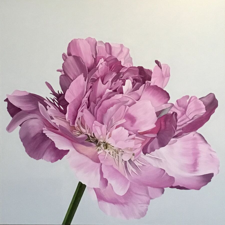 Perfect Pink Peony - SOLD