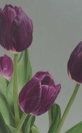 Mum's Easter tulips