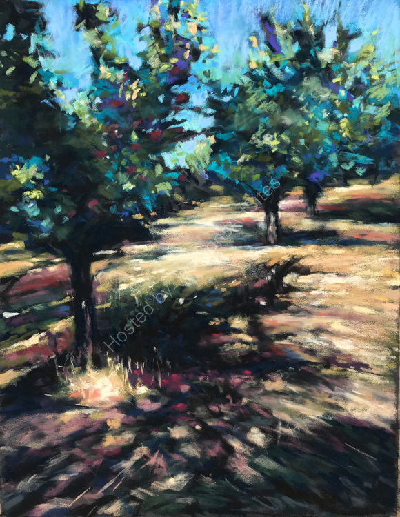 Plum Trees at Bajamont - SOLD