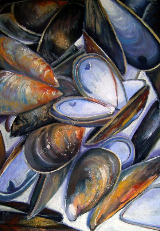 Shells -SOLD